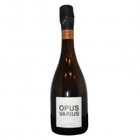 """Champagne AOP Opus Varius cuvée """"Terre Profonde"""" 100% Chardonnay - Benoit Cocteaux"""